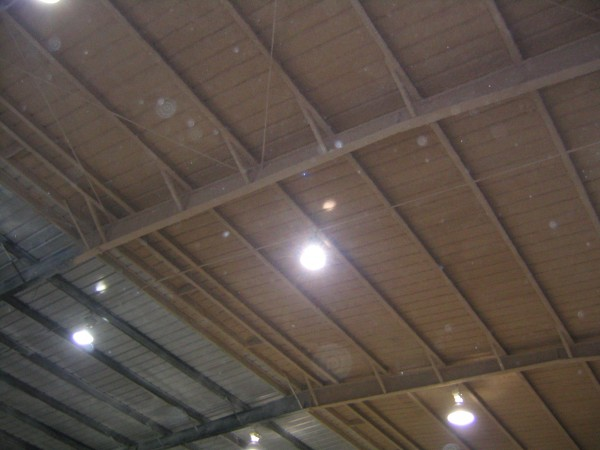 Cellulose on ceiling of metal building